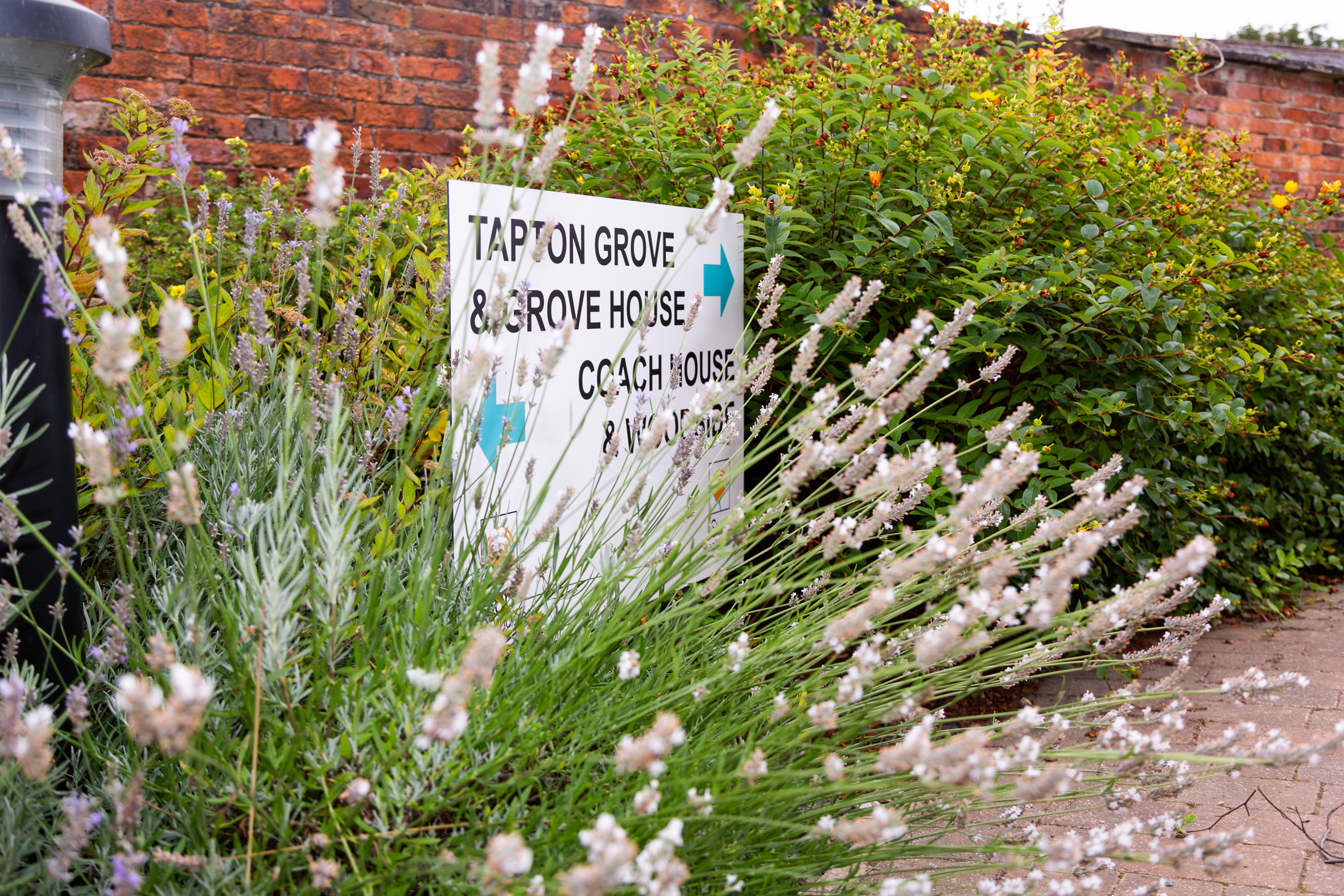 Tapton Grove sign, lavender